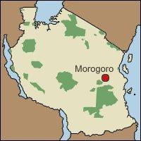 Debala va Morogoro