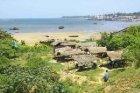 Wiks va Harbour Beach piluda koe Tanga