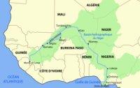 Niger bost koe Afrika